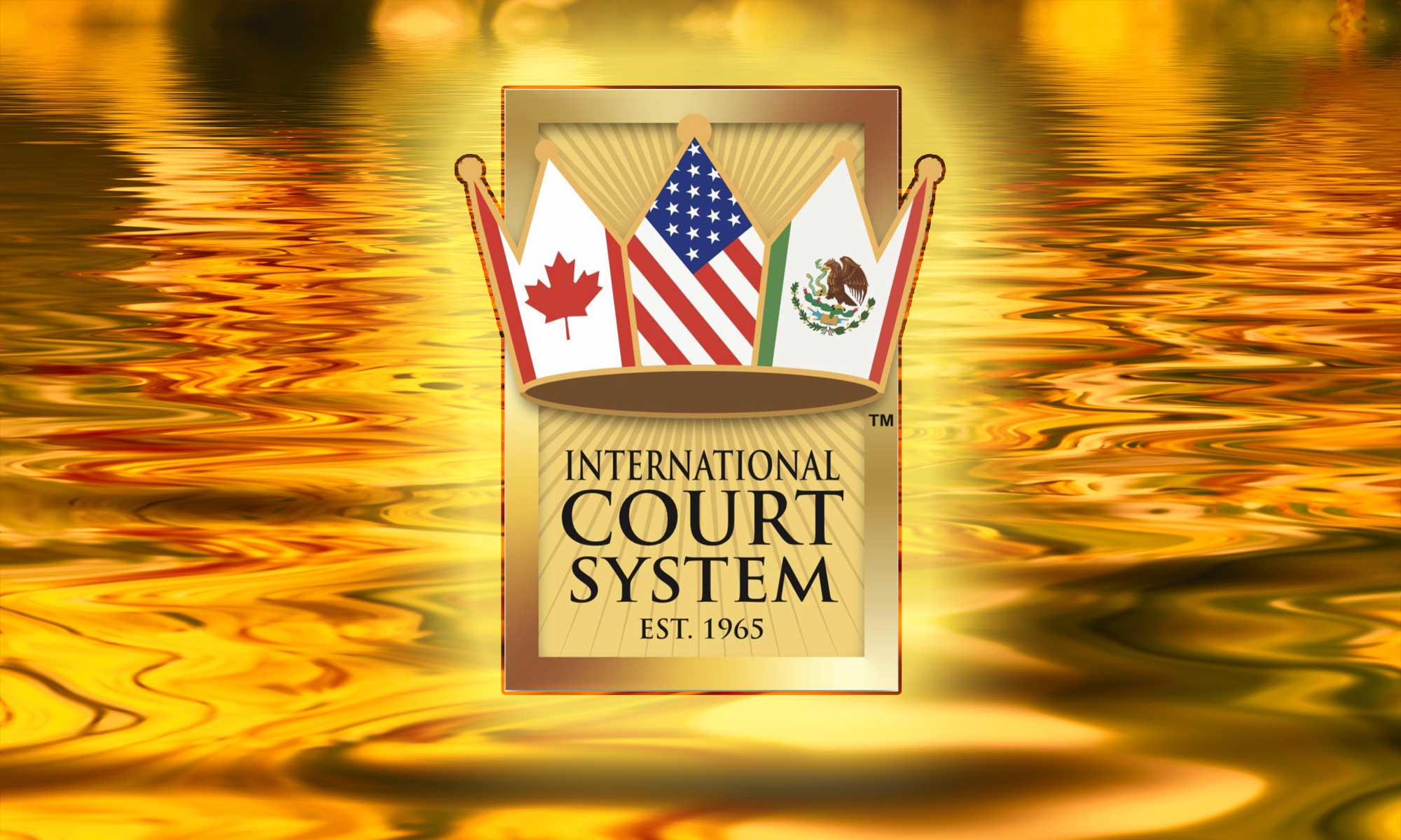 The Courts – The International Court System